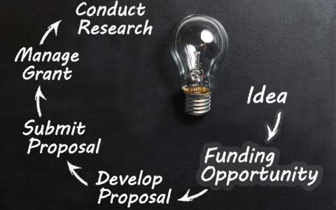 ACSR Funding Opportunity: YIA